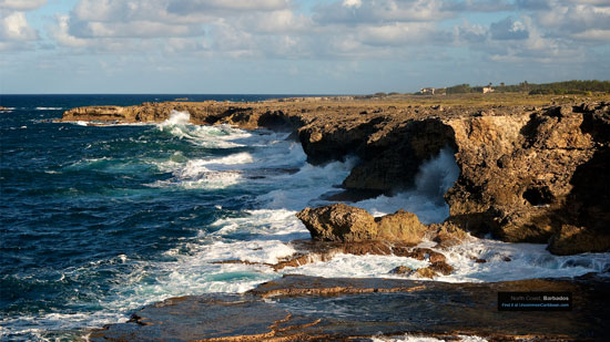 Barbados' North Coast