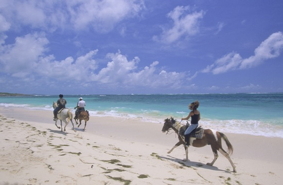 Horseback riding Anse Grosse Roche, Martinique