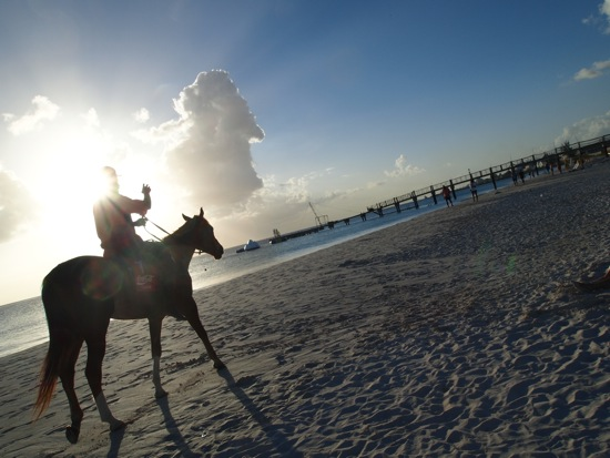 Horseback riding, Carlisle Bay, Barbados