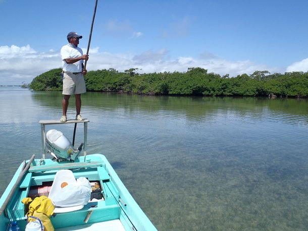 Flats Fishing in Belize