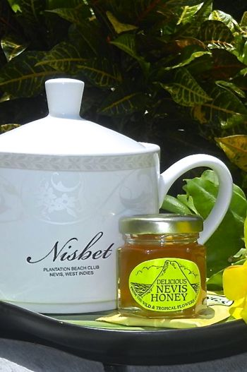 Nisbet Newlywed Honey