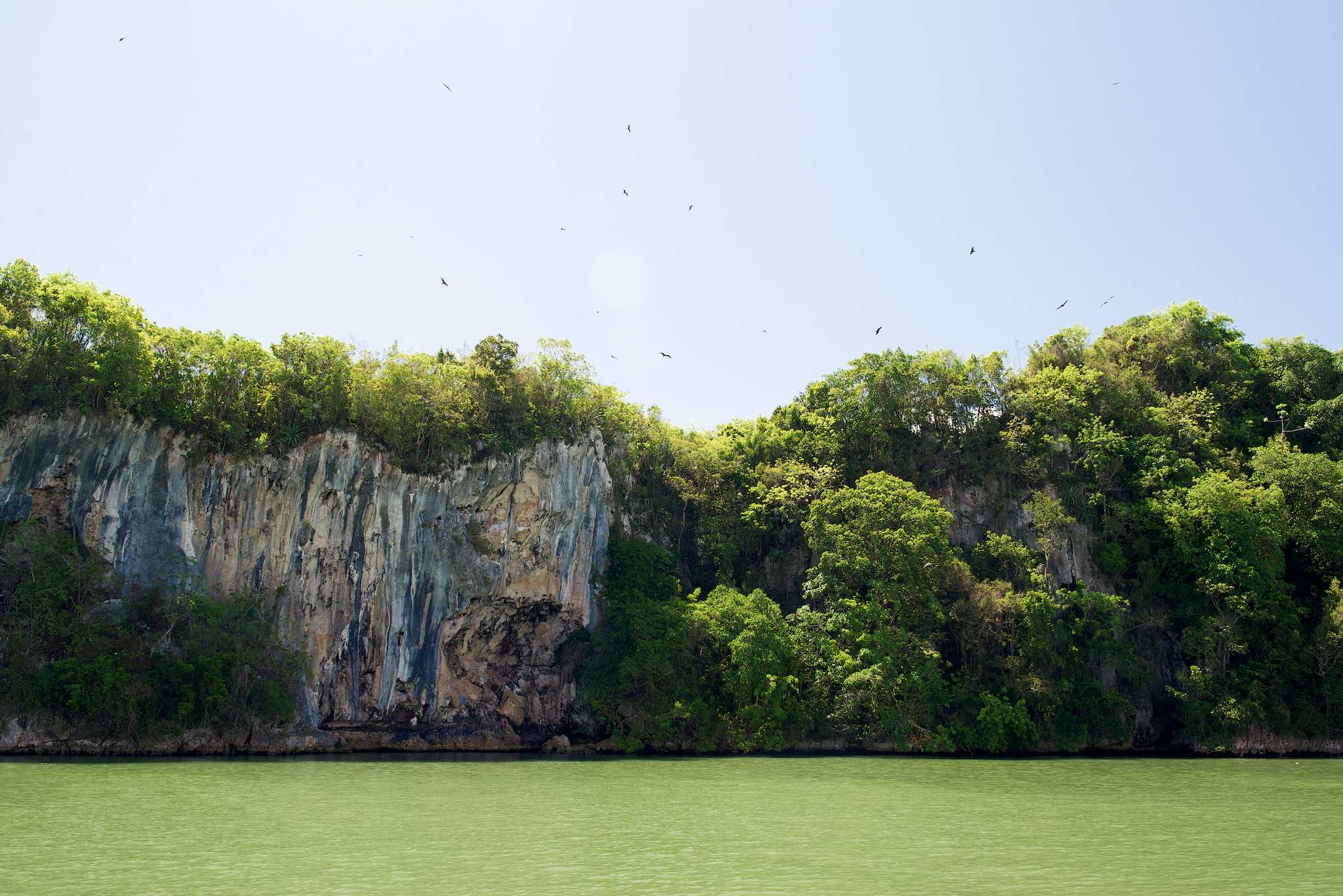 Los Haitises National Park Cliffs by Patrick Bennett