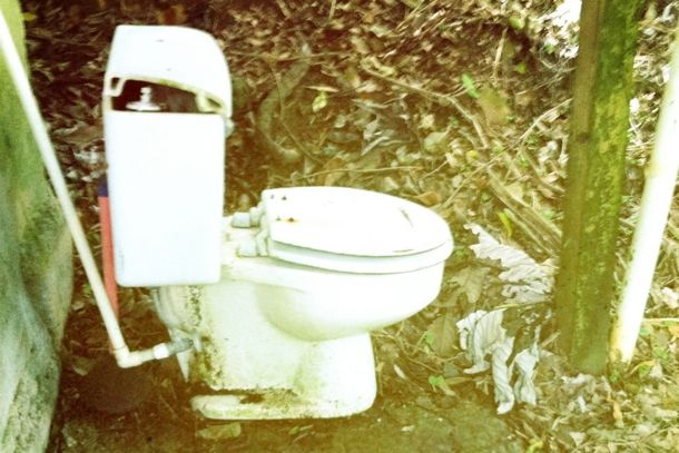 Jungle toilet at Phillips Country Cabin, El Yunque | Lily Pollak