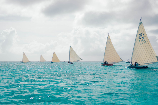 It's impressive to see these small sloops all lined up. by Patrick Bennett