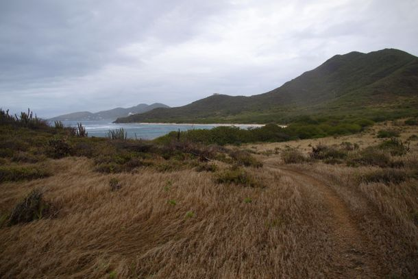 On the trail to Horseshoe Bay, St. Croix | SBPR