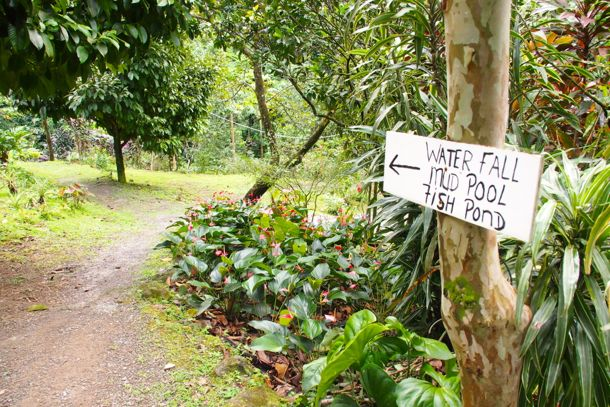 This way to relaxation at Ti Kwen Glocho, Dominica | SBPR