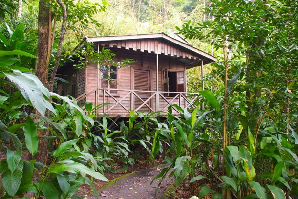 Jungle Bay Cottage | SBPR