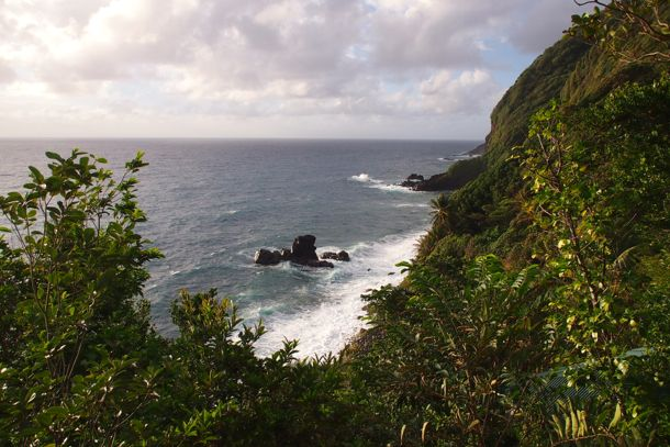 View from Breadfruit Cottage at Jungle Bay, Dominica | SBPR