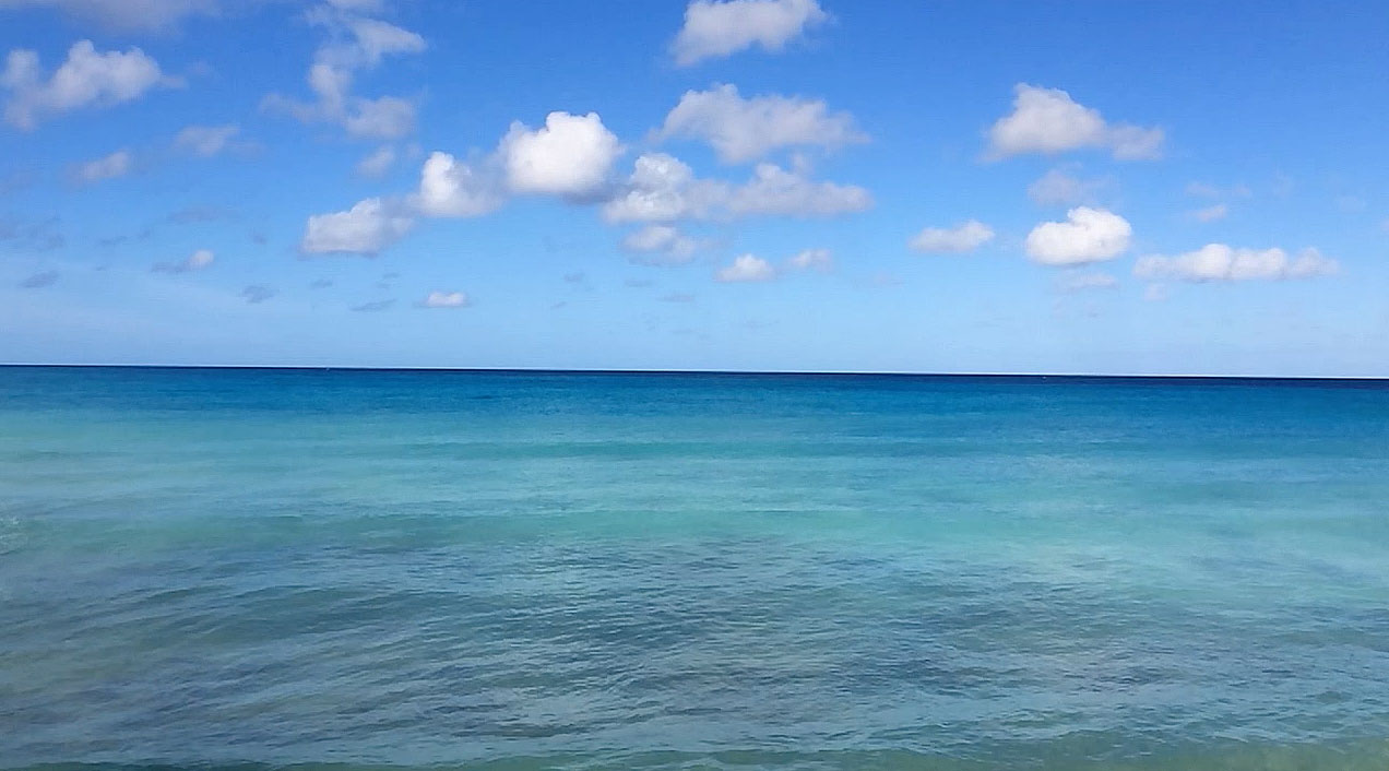 Waves from cotton house 2 Barbados by Patrick Bennett