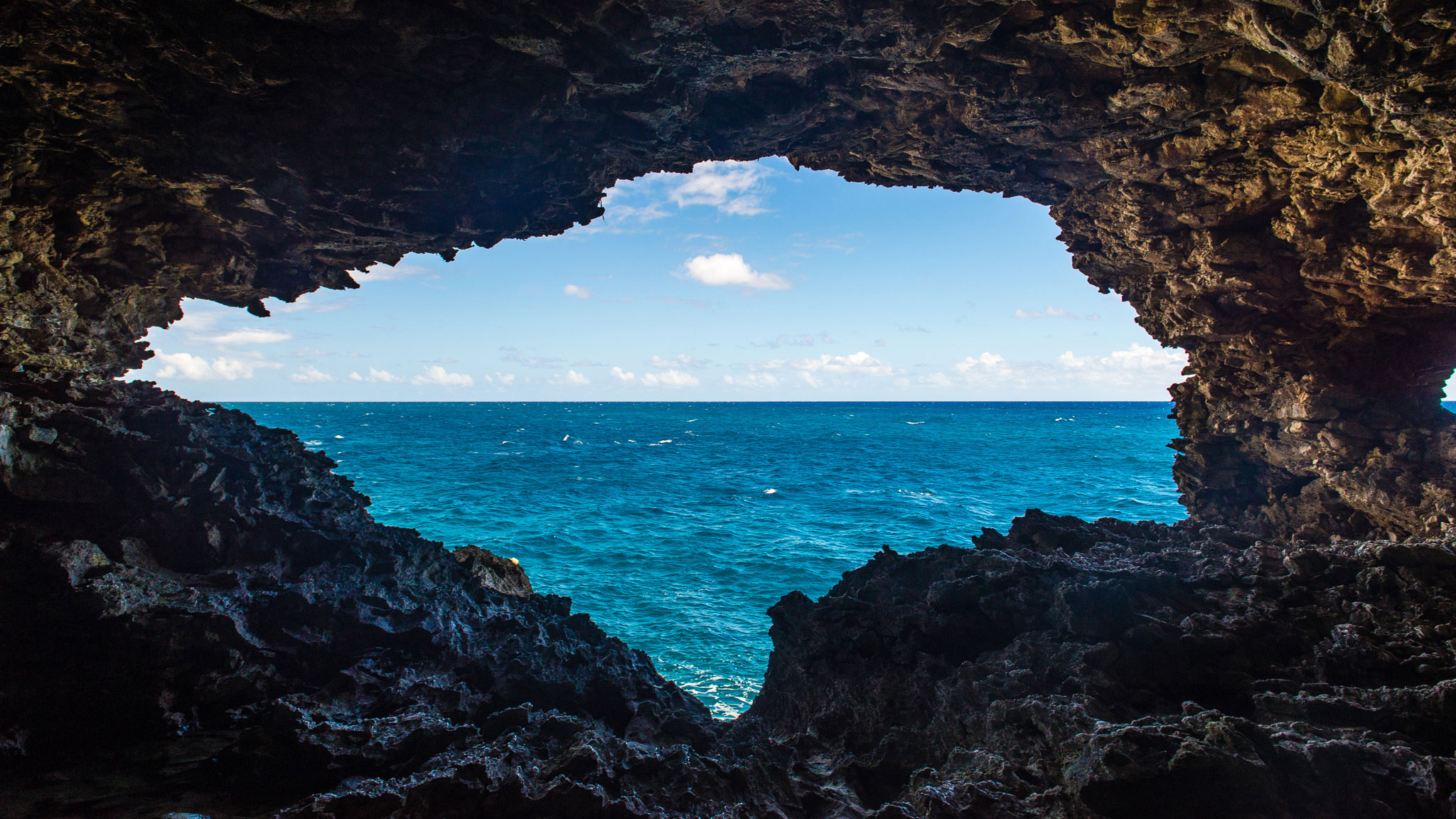 Animal Flower Cave, Barbados by Patrick Bennett