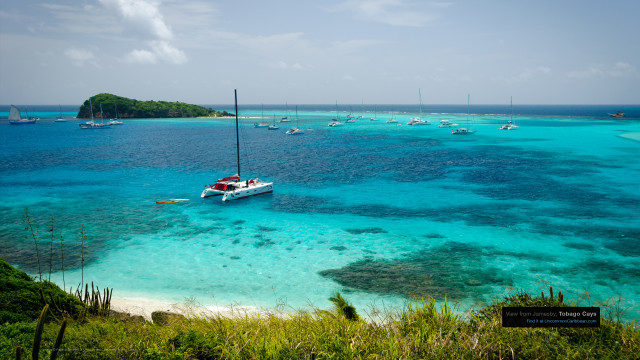 View from Jamesby, Tobago Cays, St. Vincent and the Grenadines