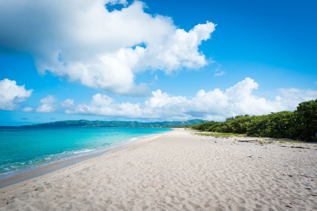 Sandy Point, St. Croix by Patrick Bennett