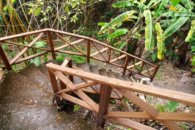 Trail Shop Stairs into the Wilds of Windwardside, Saba | SBPR