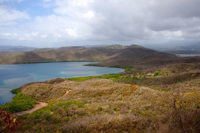 Looking back at Martinique from the highest point in the Caravelle Peninsula (elevation: 515 feet) | SBPR