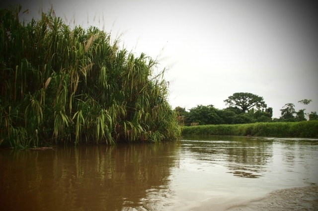 On the River to Mawamba Lodge, Costa Rica | SBPR