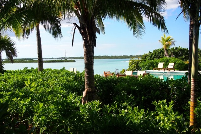 Pool view from Gumbo Limbo | SBPR