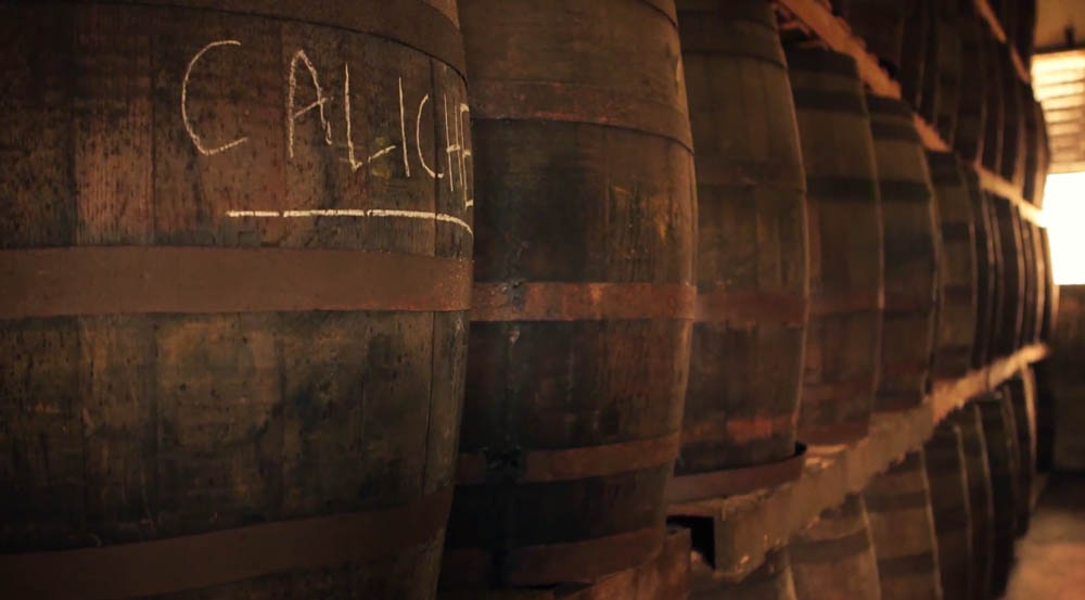Caliche Rum Barrels at Serralles Distillery, Puerto Rico