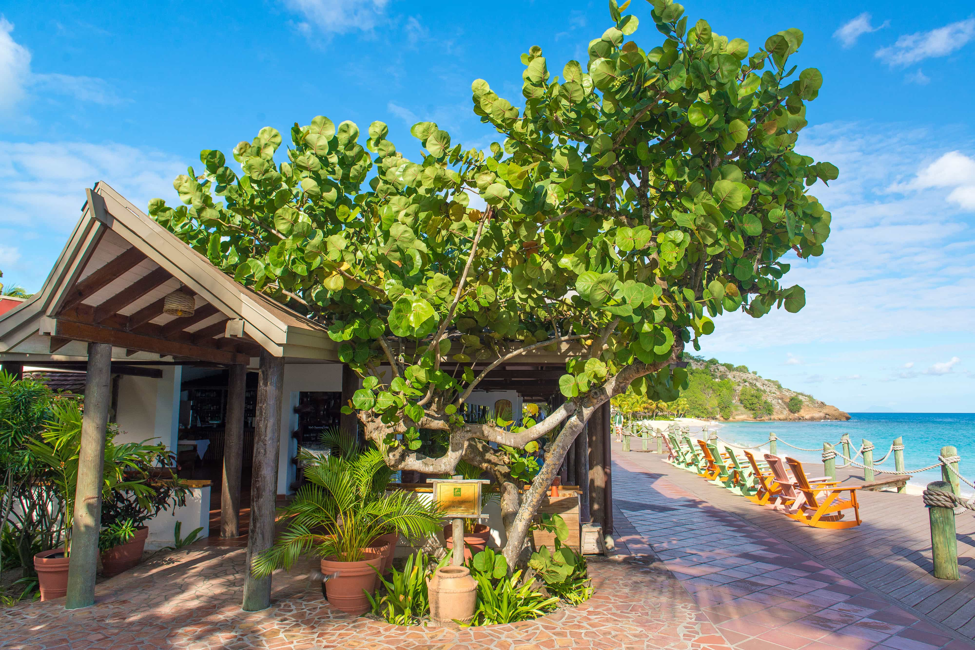 Dine and unwind in true Caribbean style beneath a seagrape tree.