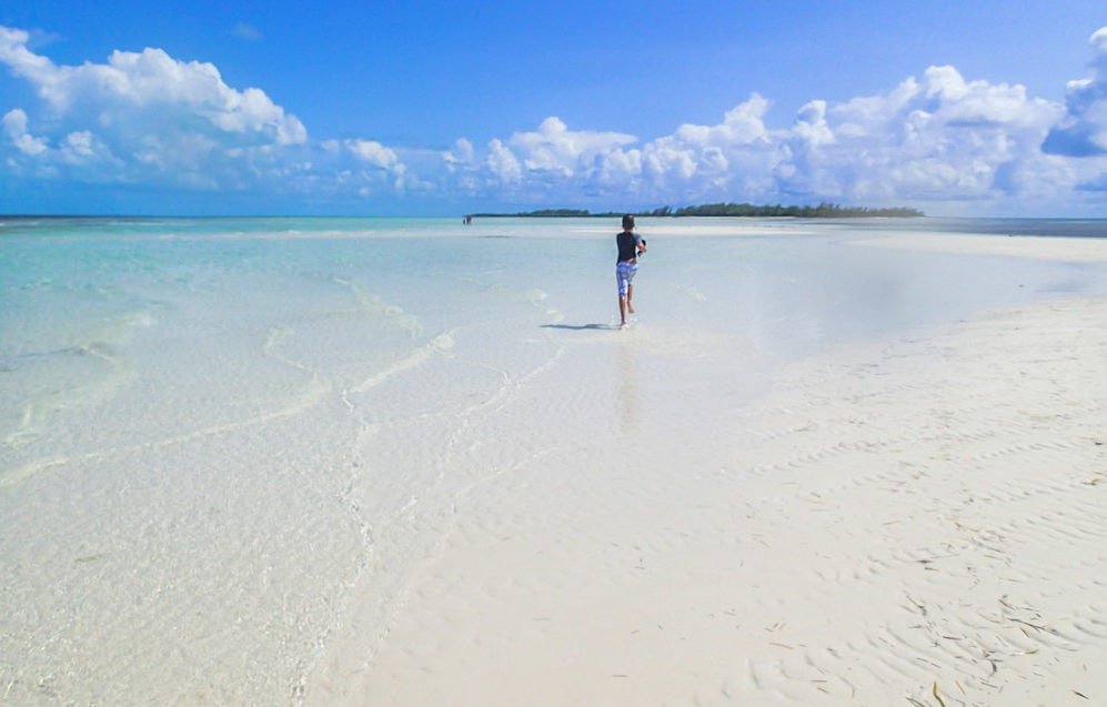 Sandbar running in Bimini, The Bahamas