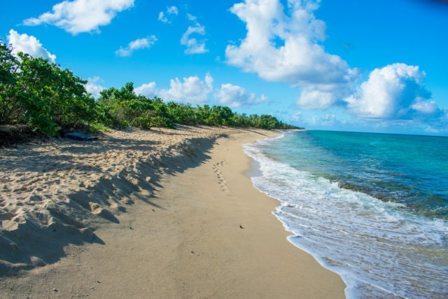 Dorsch Beach, Frederiksted, St. Croix – December 19, 2017 | SBPR