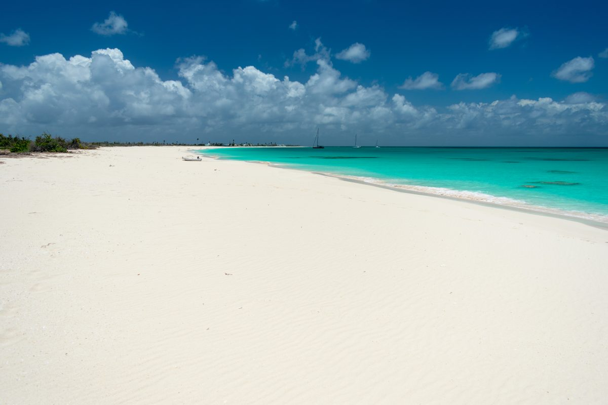 Looking southward on Princess Diana Beach at Cocoa Point, Barbuda | SBPR