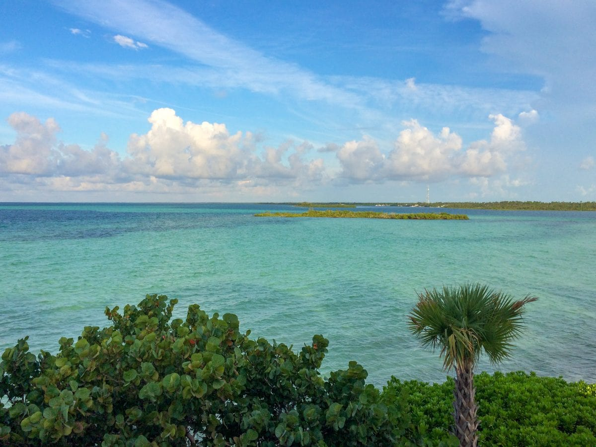 More of my view at Deep Water Cay, The Bahamas | SBPR