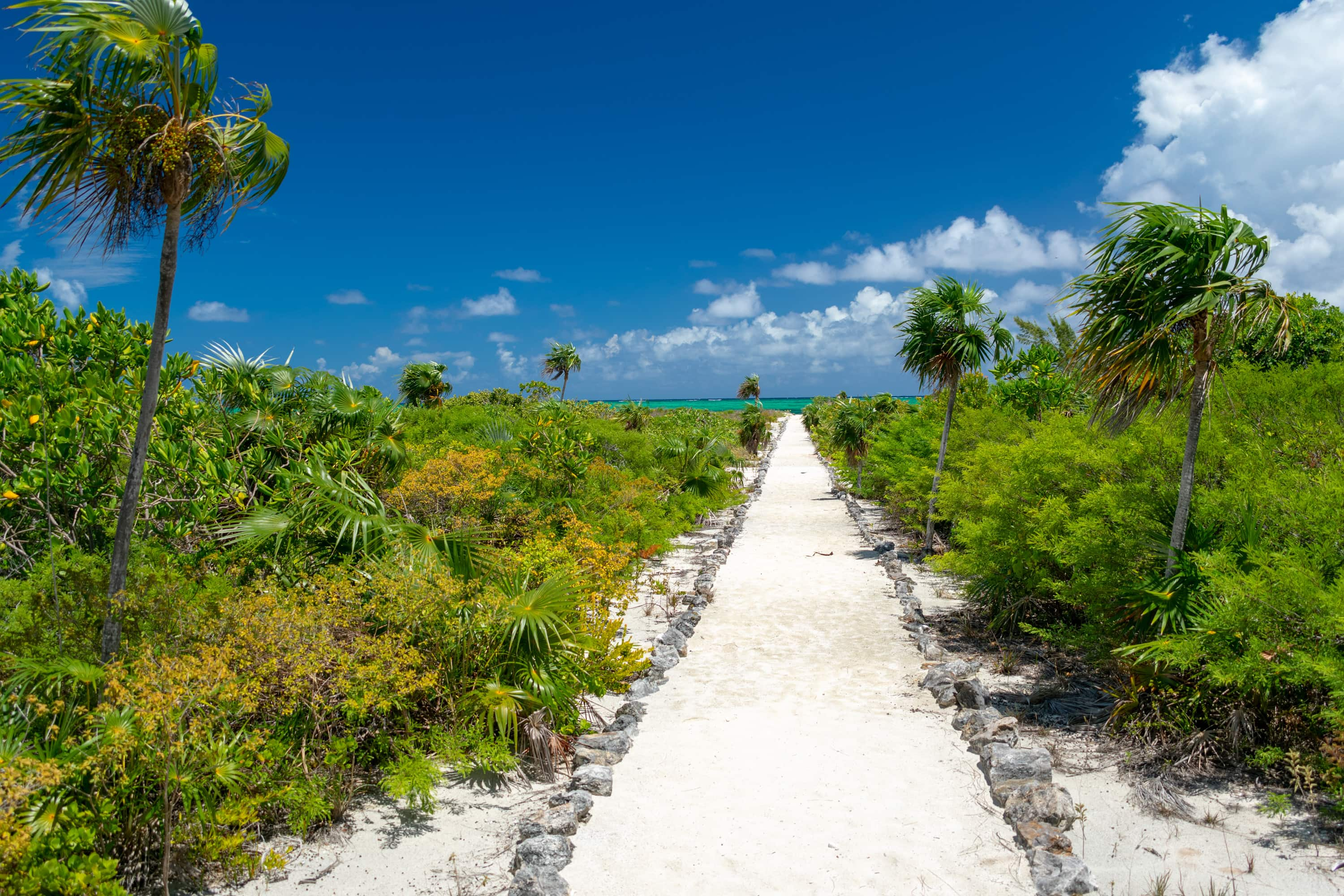 Path to Paradise, North Caicos | SBPR