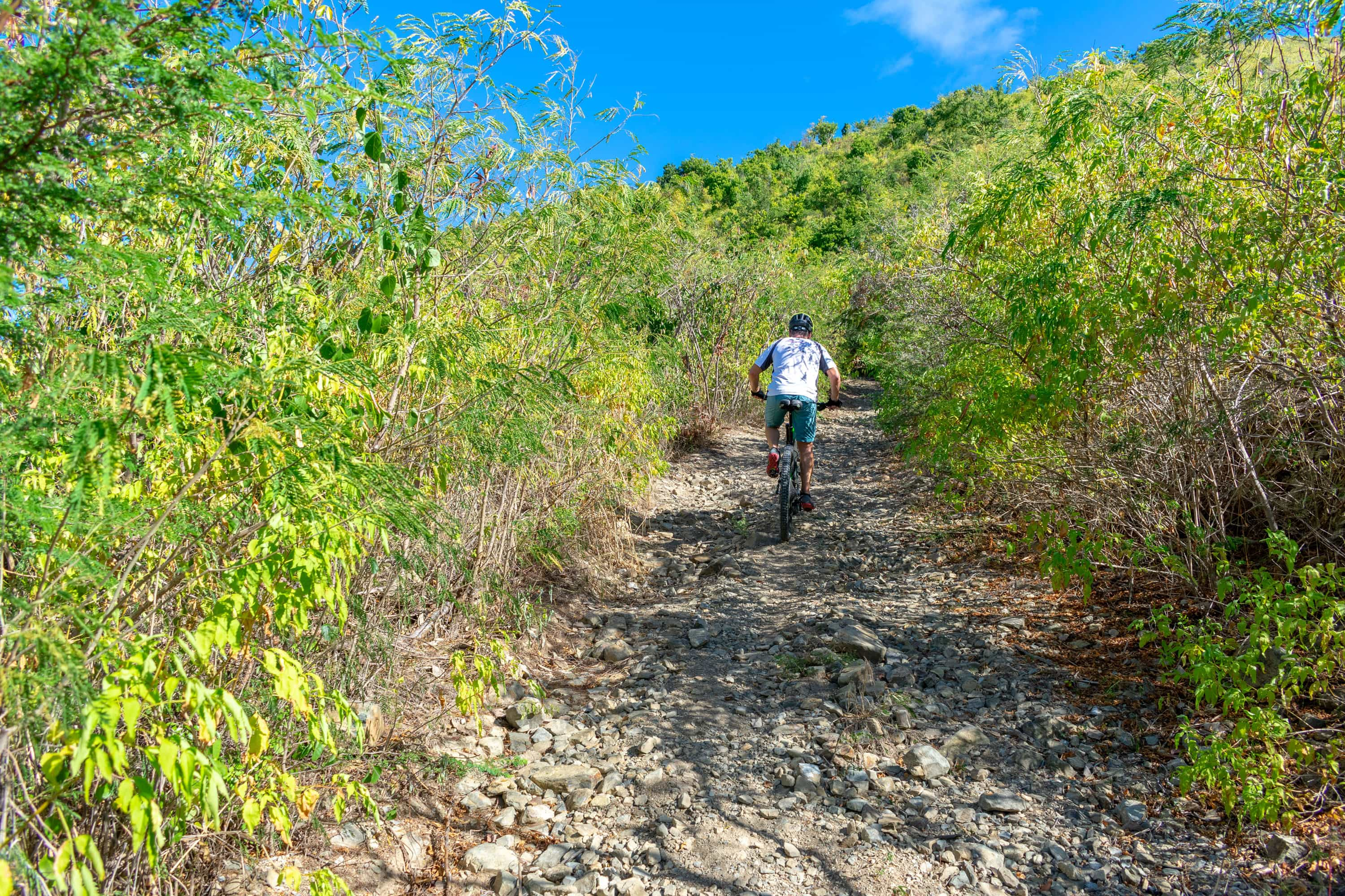 Mountain Biking Goat Hill, St. Croix | SBPR