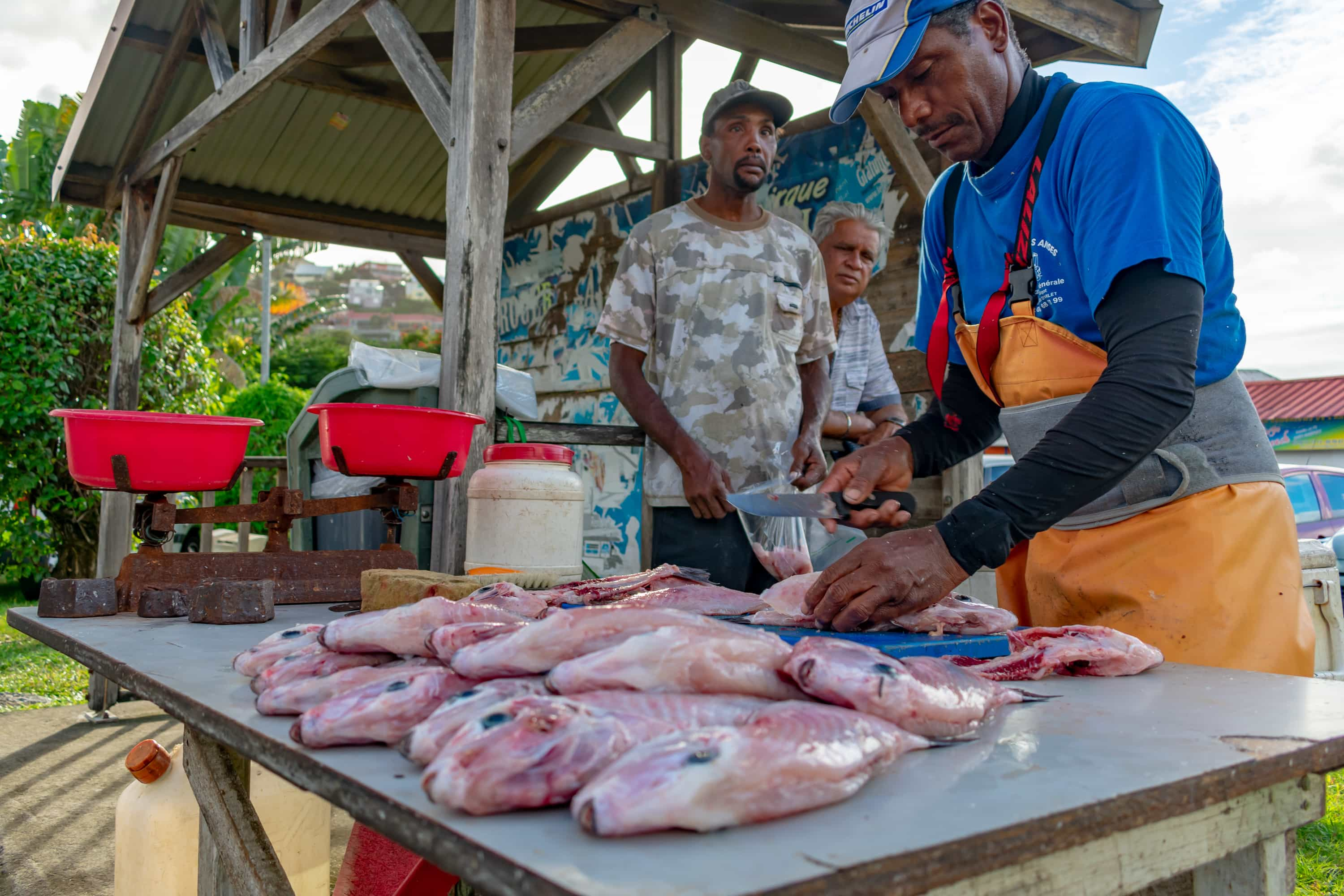 Roadside fish market in Martinique | SBPR