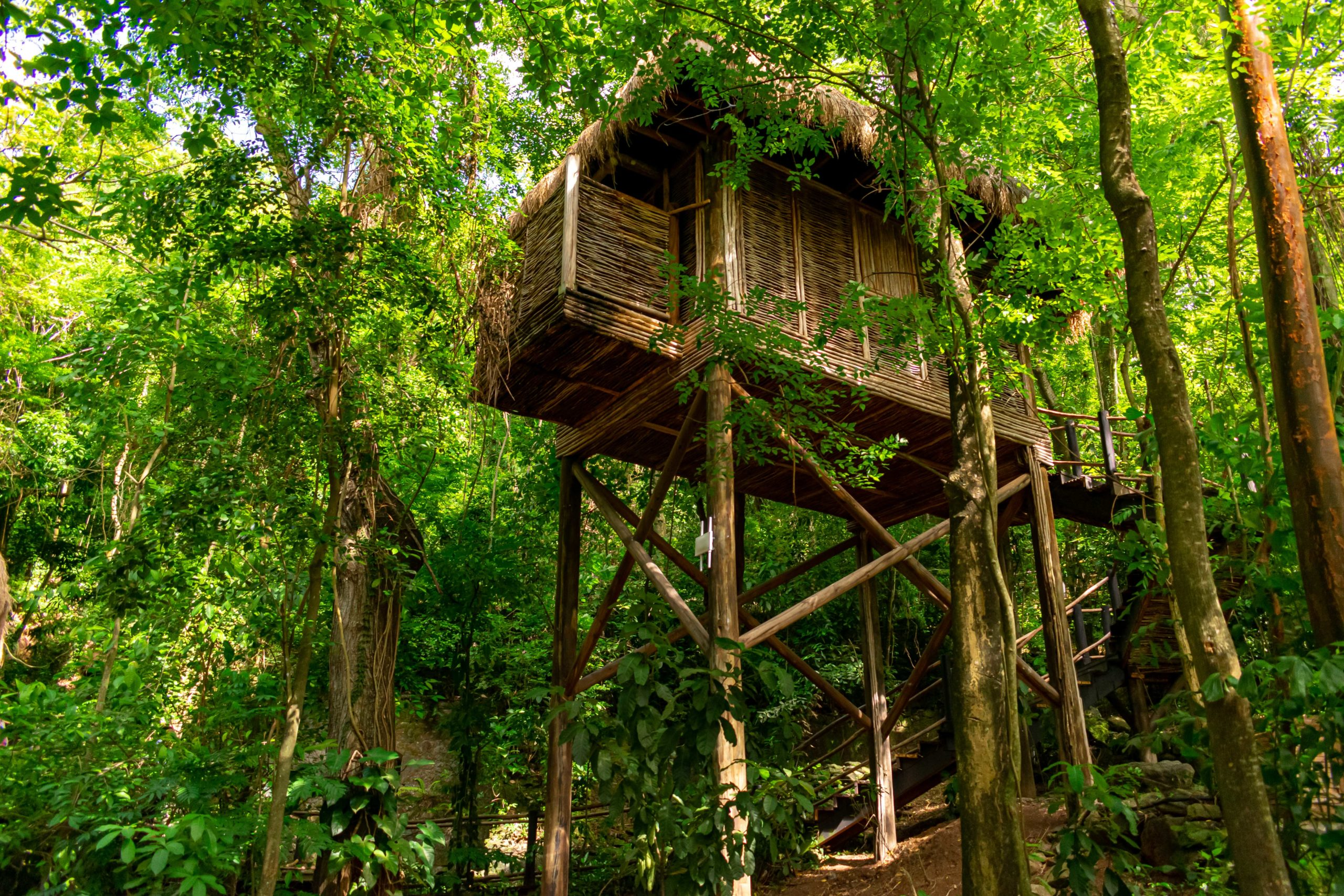 Treehouse Spa Treatment Rooms