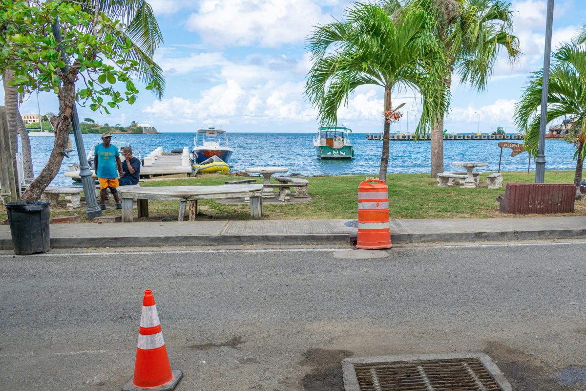 Seaside lime in Gallows Bay