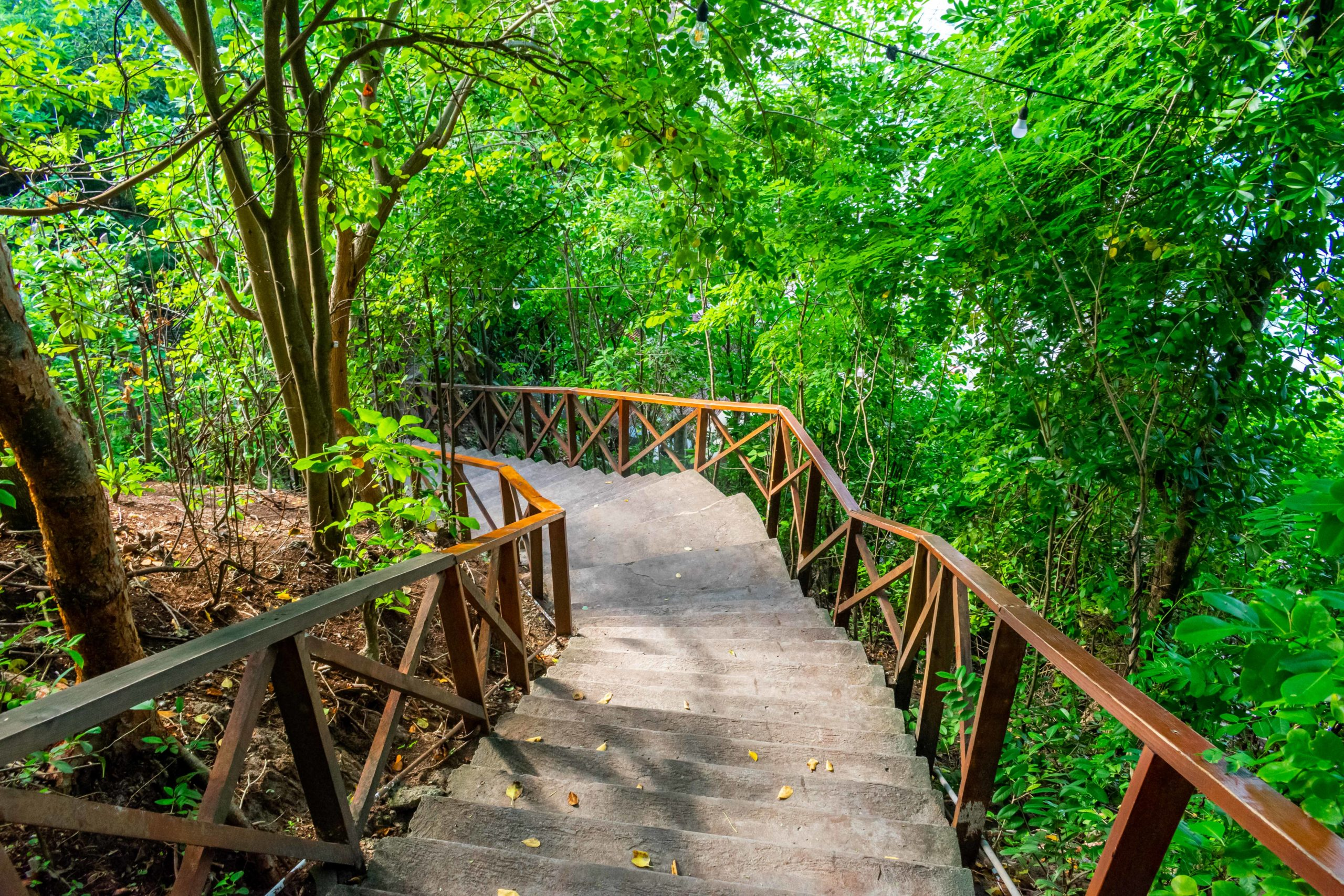 Stairway to Smuggler's Cove, Saint Lucia