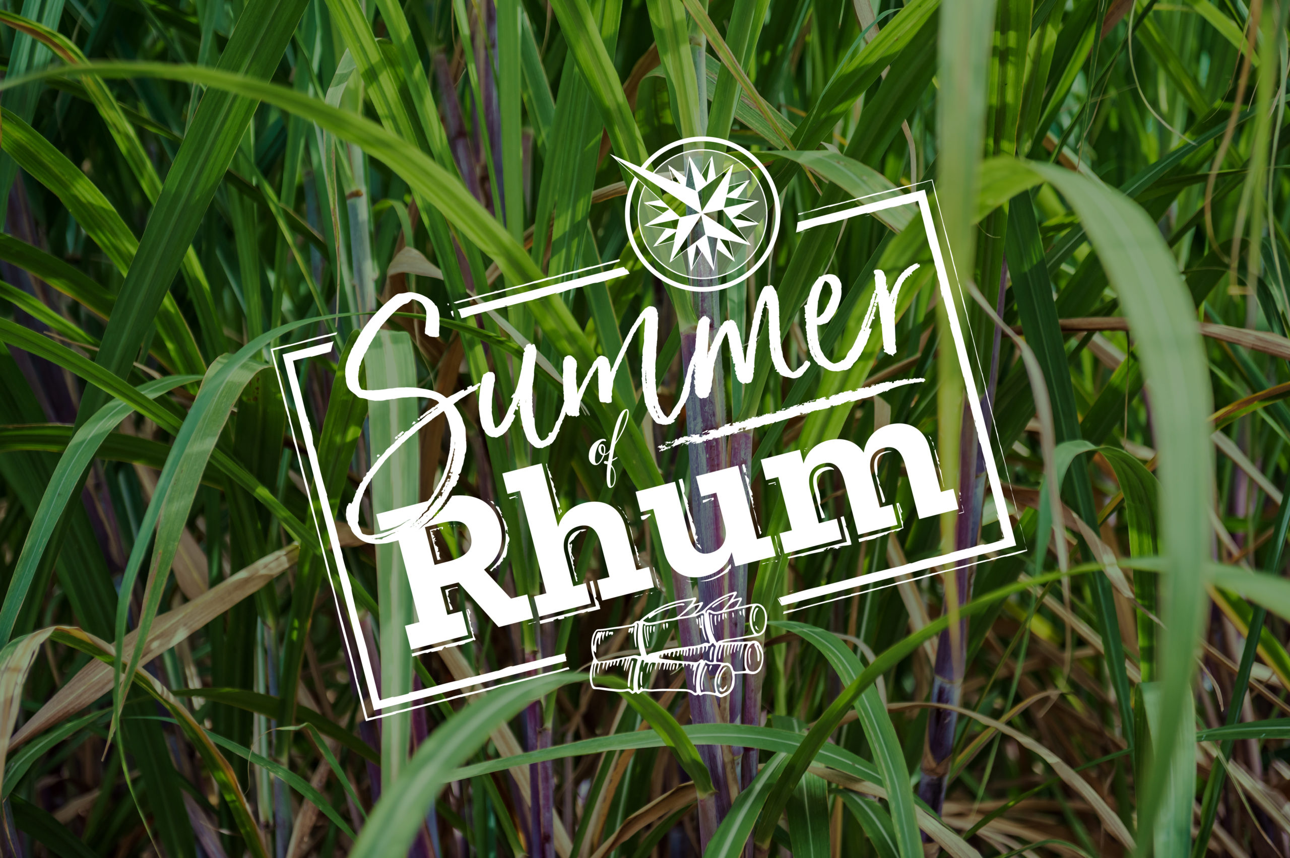 Summer of RHUM