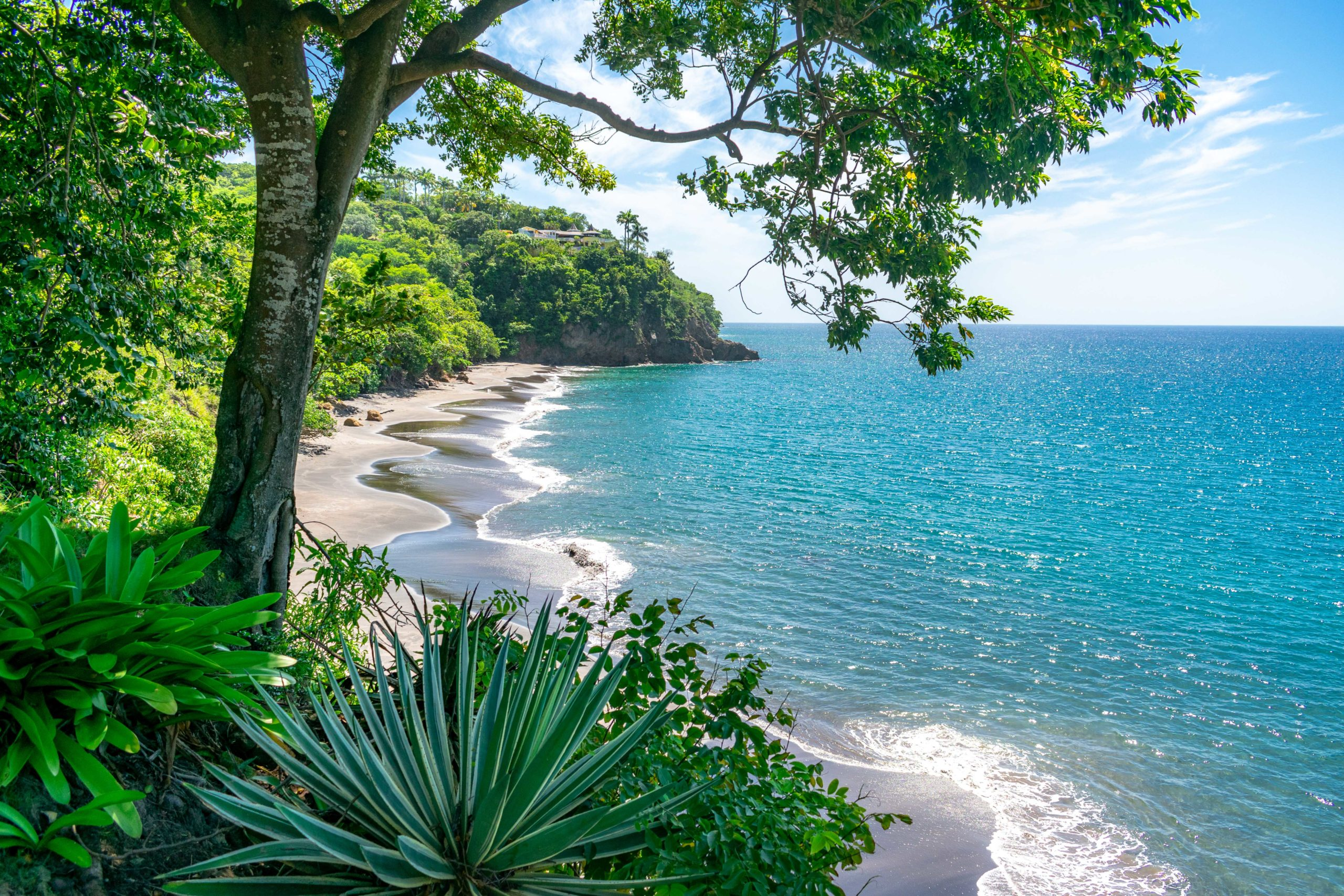 Royal View of Woodlands Beach, Montserrat