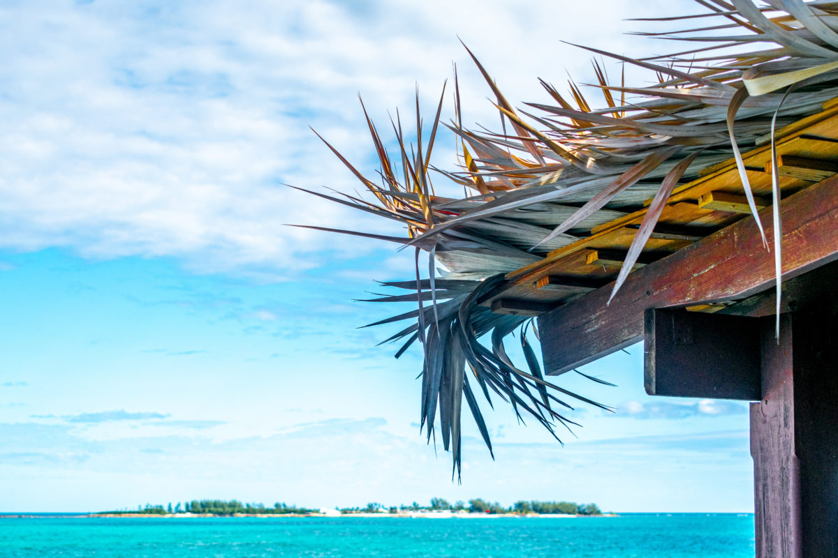 Beachfront Thatched Roof