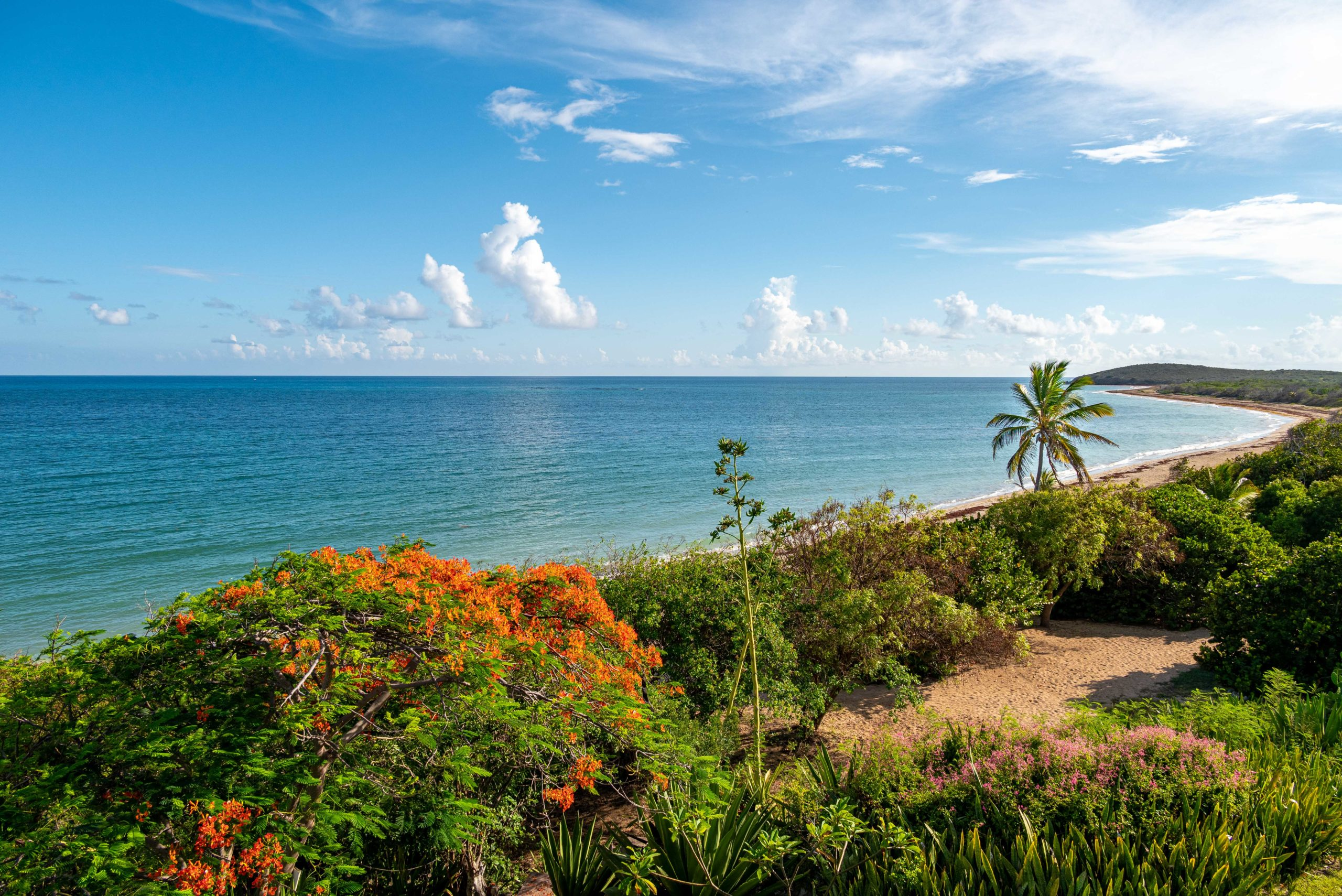 Hummingbird Beach Hideaway, St. Croix: View With a Room